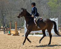 Young Equestrian. A young girl shows how well her horse performs in the ring at the April 2009 Maryland Saddle Association show Royalty Free Stock Image