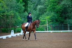Young equestrian at a Dressage Show Stock Photo