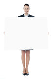 Young executive with an advertising board Stock Photos