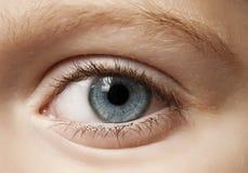 Young eye Stock Image