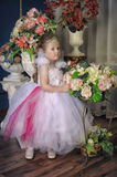 Young fairy Royalty Free Stock Photos