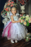 Young fairy Royalty Free Stock Photo