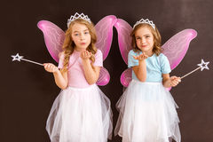 Young fairy queens Royalty Free Stock Image
