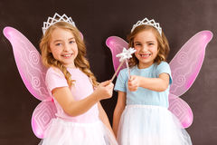 Young fairy queens Stock Image