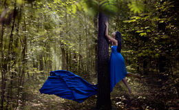 Young fairy woman flying up in forest Royalty Free Stock Photography