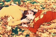 Young family and autumn concept. Couple in love. Lies on dry fallen leaves in park. Girl and bearded guy or happy lovers on a date hug. Man and woman with calm stock images