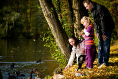 Young family in the autumn park Stock Image