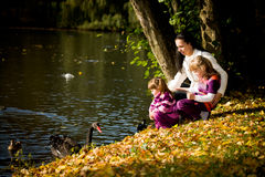 Young family in the autumn park Royalty Free Stock Photography