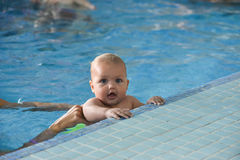 Young family with baby having in the swimming pool. Royalty Free Stock Photography