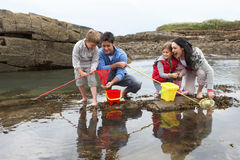 Young family at beach collecting shells Stock Images