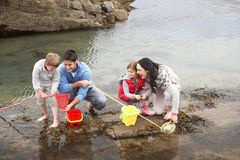 Young family at beach collecting shells Stock Photography