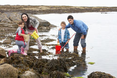 Young family at beach collecting shells Royalty Free Stock Image