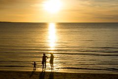 Young family at the beach. Toddler and parents in silhouette at the beach playing in the water Royalty Free Stock Images