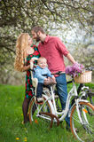 Young family on a bicycles in the spring garden. Happy baby sitting in bicycle chair against kissing parents on the background of blooming trees, dandelions and Stock Photography