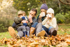 Young family blowing their nose stock images