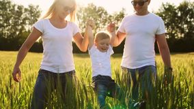 A young family with a young child running in a field with spikelets of wheat swinging a boy in his arms who laughs and. Smiles with happiness stock footage