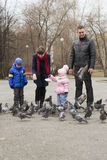 Young family with children feed pigeons in the park. Royalty Free Stock Images