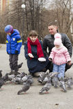 Young family with children feed pigeons in the park. Stock Images