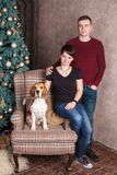Young family Couple with beagle dog on the chair near the New Year tree. Stock Image