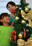 Young family decorating a Christmas Royalty Free Stock Image