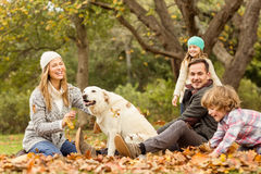 Young family with a dog in leaves royalty free stock image