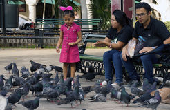 Young family feeding pigeons Stock Photos