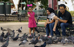 Young family feeding pigeons Stock Images