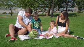 Young Family of Four Having Picnic in City Park. Young Family Having Picnic in a City Park in Summer Day. Young Father Cutting Watermelon in Slow Motion. Family stock video