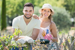 Young family in gloves  in plants garden Stock Photo