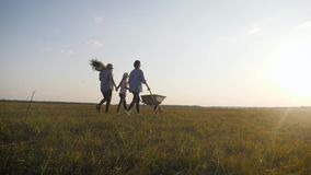 Young family having fun outdoors in their farm. Gardener woman pushing wheelbarrow with vegetables at sunset. Family stock video