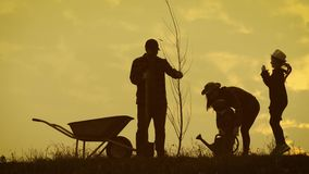 Young family having fun outdoors in their farm. Silhouette family of four planting a new tree at sunset. Teamwork happy. Family concept stock video footage