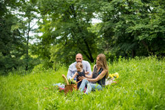 Young family having picnic royalty free stock photos