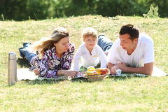 Young family having a picnic in nature Stock Images