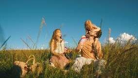 Young family having picnic by the river stock video footage