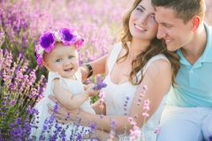 Young family in a lavender field royalty free stock photography