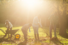 Young family picking up leaves Stock Image