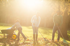 Young family picking up leaves Royalty Free Stock Photography