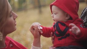 Young family playing with baby in autumn park. Happy motherhood and childhood. Parents enjoy their child stock video