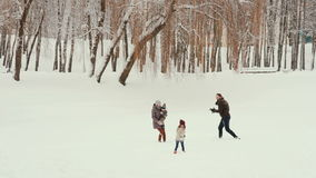 Young family playing and having fun in the snow stock video footage