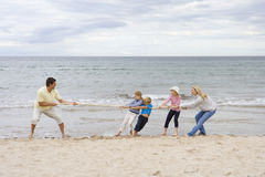 Young family playing tug of war at beach.  Stock Images