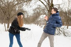 The young family plays winter wood on snow Stock Image