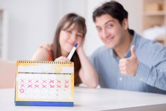 Young family in pregnancy planning concept with ovulation calend. Ar stock images