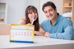 The young family in pregnancy planning concept with ovulation calendar. Young family in pregnancy planning concept with ovulation calendar royalty free stock photography