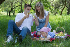 Young family of three on a picnic Royalty Free Stock Image