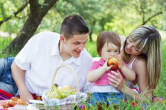 Young family of three on a picnic Royalty Free Stock Photo