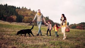 A young family with two small children and a dog on a walk in autumn nature. stock video footage