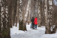 Young family walk in winter wood. Parent pulling Stock Photo