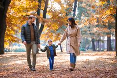 Family walking in the autumn park with his son, holding hi. Young family walking in the autumn park with his son, holding his hand royalty free stock image