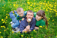Young family walking on the meadow with yellow flowers in spring Royalty Free Stock Photos