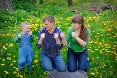 Young family walking on the meadow with yellow flowers in spring Stock Image